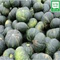 유기농 미니 단호박 5kg